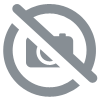 BOIS BANDE - DISPLAY OF 12 ASSORTED BOTTLES OF 200 ML